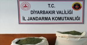Diyarbakır'ın Lice İlçesinde 62 Kg Esrar Ele Geçirildi