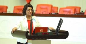 CHP'li Şahin Ücretli Öğretmen Mağduriyetini Meclise Taşıdı