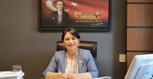"CHP'li Şevkin: ""ÇBH'yi Bırak, Adana Havalimanına Bak!"""