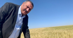 """Gürer: """"Tarımda  Lafla Peynir Gemisi Yürümüyor"""""""