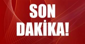 Ankara'nın Mamak İlçesinde Orman Yangını!