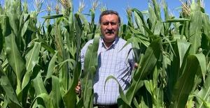 """Gürer: """"Ekim Alanlarının Daralması Çiftçinin Sessiz Protestosudur"""""""