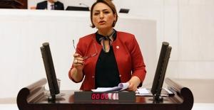 CHP'li Şevkin'den Arı Ölümlerinin Önlenmesi İçin Araştırma Önergesi