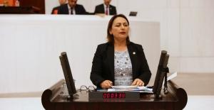 """CHP'li Şevkin: """"Kadınlar Ölüyor, Kabineden Ses Çıkmıyor!"""""""