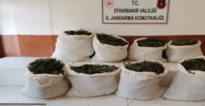 Diyarbakır'ın Lice ilçesi'nde 325 Kilogram Esrar Maddesi Ele Geçirildi