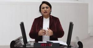 """CHP'li Şevkin: """"Gençlerin Önündeki Kara Tabloyla Teknoloji Gelişmez"""""""