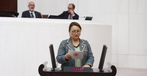 """CHP'li Şevkin: """"60 Bin Sağlık Meslek Lisesi Mezunu İşsiz"""""""
