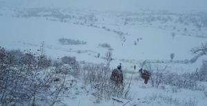 İçişleri Bakanlığı Duyurdu: Eren-3 Ağrı Dağı Operasyonu Başlatıldı