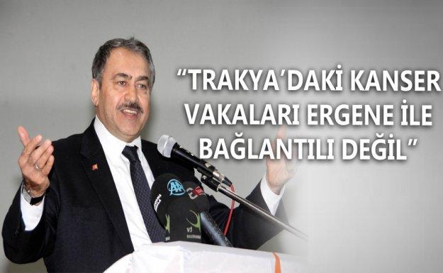 Bakan Eroğlu: Kanser Vakaları Ergene ile Bağlantılı Değil