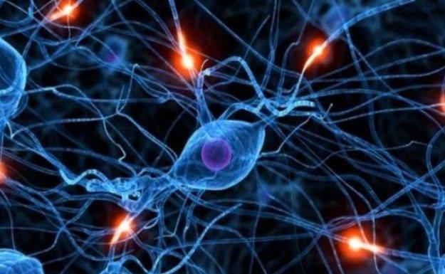 Baygınlık ile Epilepsiyi Karıştırmayın