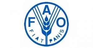 FAO Atık Suların Tarımda Kullanılması Peşinde