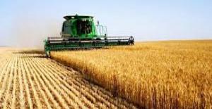 Tarım-ÜFE Mart'ta Yüzde 0,98 Azaldı