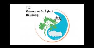 Orman ve Su İşleri Bakanlığı Ücretsiz Fidan Dağıtımını Sürdürüyor