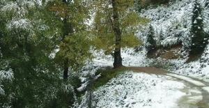 Batı Karadeniz'in İç Kesimlerinde Yoğun Kar Yağışı Uyarısı!