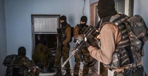 Şırnak'ta Üç Terörist Teslim Oldu
