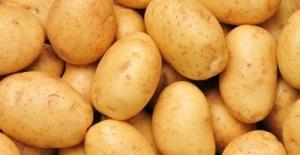 TZOB Genel Başkanı Bayraktar: Yeni Hasatlarla Patates-Soğan Fiyatları Düşecektir