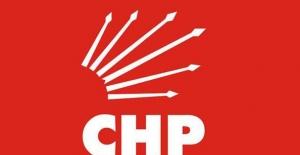 CHP'de Üyelerin Yüzde 8,2'si Genç Üye