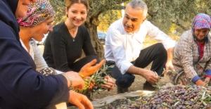 """AK Partili Savaş: """"Aydın Tarımsal Yatırımın Merkezi Olacak"""""""