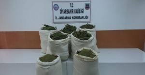 Lice'de 175 Kilo Uyuşturucu Ele Geçirildi