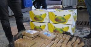 Ambarlı Limanı'nda 78 Kilogram 830 Gram Kokain Ele Geçirildi