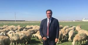 """CHP'li Gürer: """"Çiftçiler Üretimden Çok, Sorunlarla Boğuşuyor"""""""