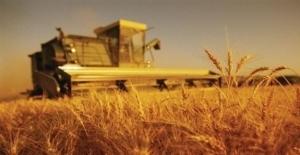 Devlet Destekli Tarım Sigortalarında Toplam Sigorta Bedeli Yüzde 39,3 Arttı