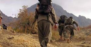 Diyarbakır Lice'de Bir PKK'lı Terörist Yakalandı