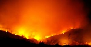 """Öz Orman-İş Sendikası Genel Başkanı Aslan""""Yangın Çok Söndürecek İşçi Az"""""""