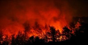 CHP'li Sertel'den İzmir Orman Yangınıyla İlgili Çarpıcı Açıklamalar