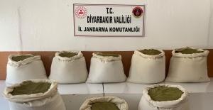 Diyarbakır'da 231,65 Kg Esrar Ele Geçirildi