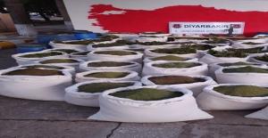 Diyarbakır, Muş ve Bingöl'de Çok Sayıda Malzeme Ve 1 Ton 615,45 Kg Esrar Ele Geçirildi