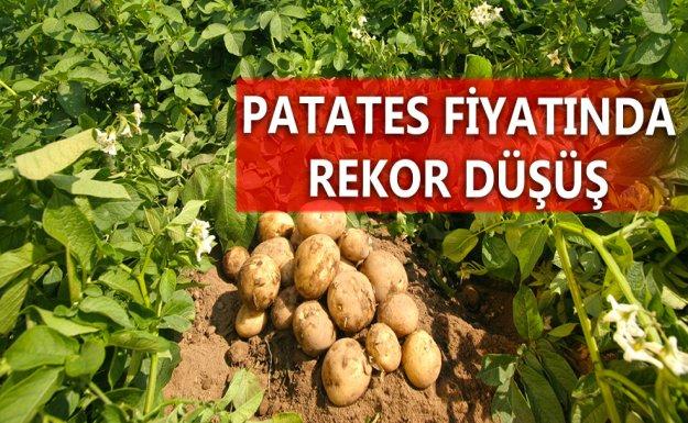 Patatesin Kilogram Fiyatı Düştü
