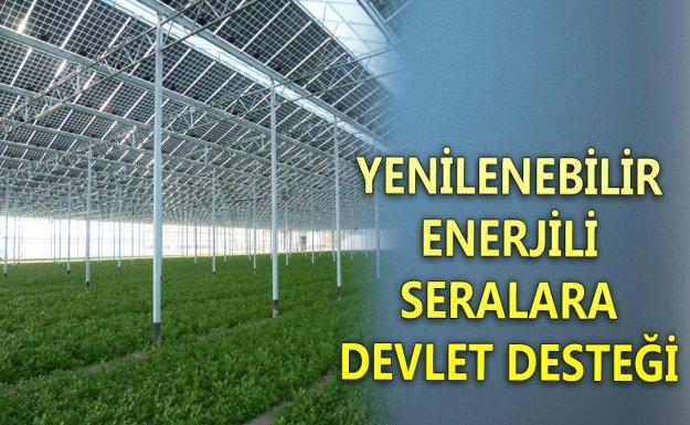 Yenilenebilir Enerjili Seralara Devlet Desteği