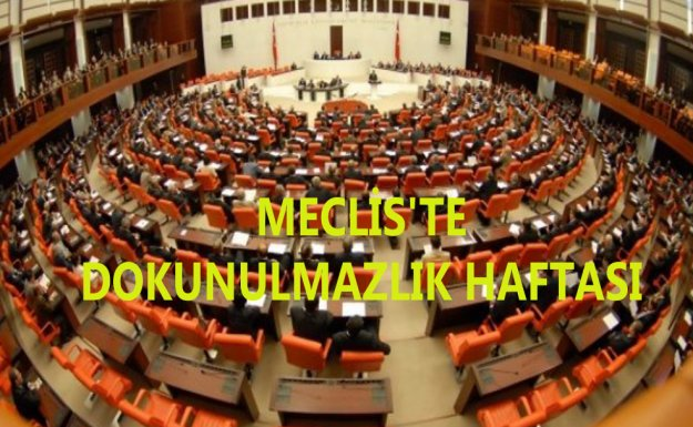 Meclis'te Dokunulmazlık Haftası