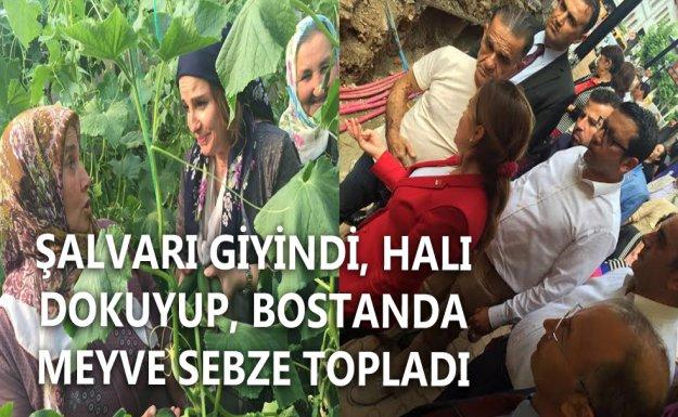 CHP'li Cankurtaran'dan Köylü Kadınlara Destek