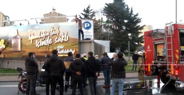 """Hayvan Sever Aktivist Meryem Çiftçi: """"İmdat! Türkiyede Hayvan Katliamı Var!"""""""