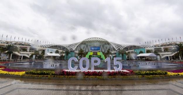 Xi Jinping, Biyolojik Çeşitlilik Konferansı Liderler Zirvesi'ne Katılacak