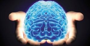 Beyniniz Nasıl Çalışır?
