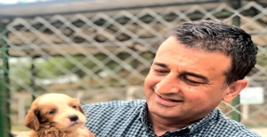 CHP'li Bulut: Hayvan Hakları Yasası Nerede?