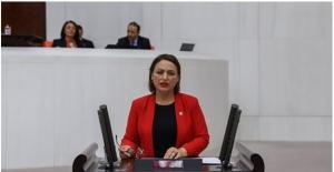 """CHP'li Şevkin: """"Afet Eğitim Yılında Afet Yönetimi Ve Mezunları Yok Sayılıyor!"""""""