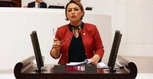"CHP'li Şevkin: ""Yüzbinlerce Genç Üniversiteli İşsizlik Girdabında"""