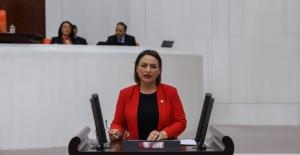"""CHP'li Şevkin: """"Yandaşın Değil Öğrencinin, Çiftçinin, Esnafın Borcunu Silin"""""""